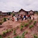 カンボジア自立村(農業支援)